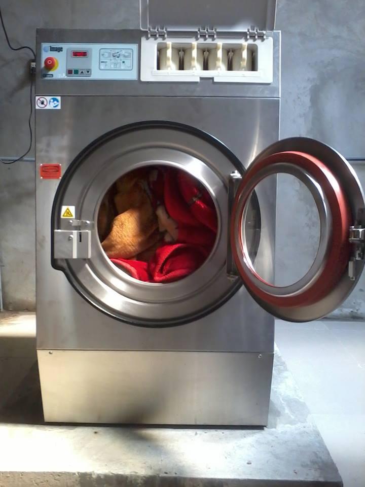 Bán máy giặt công nghiệp